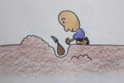 ほんとに植える