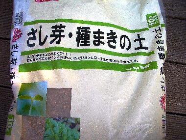 種まきの土