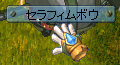 セラ弓0820