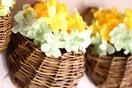 朝日村 まゆの花の会
