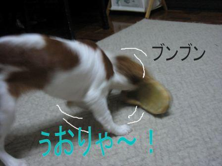 IMG_1274.jpg