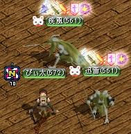 ぴぃ太 12.02.07