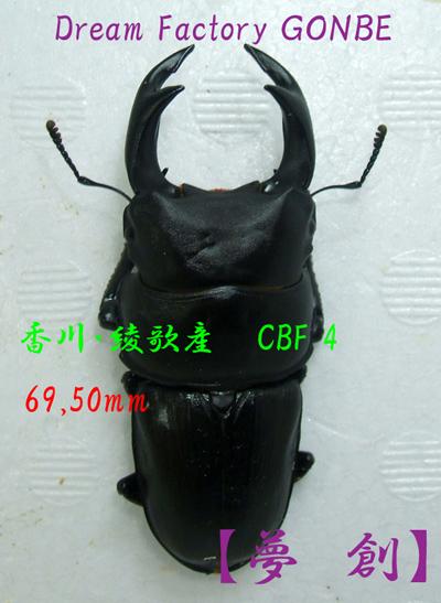 ka-gt-695-1-burogu.jpg