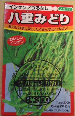 いんげん種袋