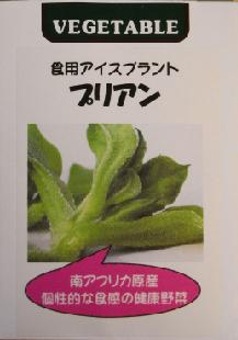 アイスプラント種袋