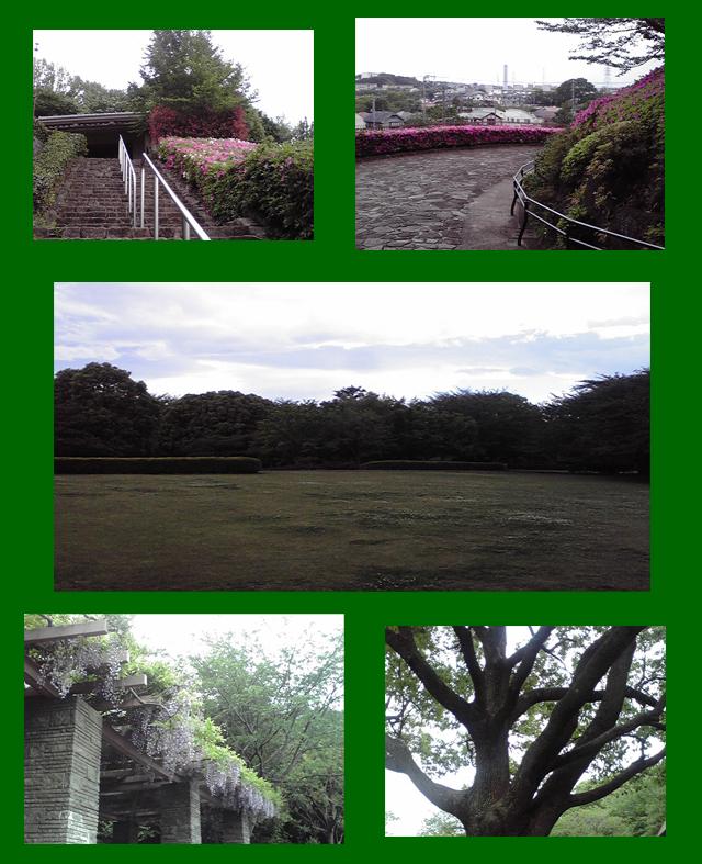 大庭城址公園風景