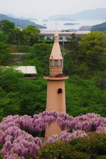 千光寺公園藤と塔