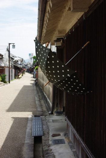 今井 傘1