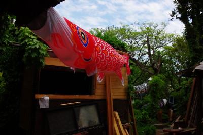 尾道アート館 庭