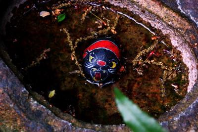 尾道アート館 手水鉢の福石猫