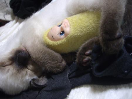 2009年5月19日 - リキッドとバナナ