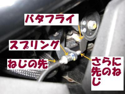 IMG_7572.jpg