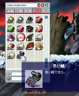 shigunasu02_25.jpg