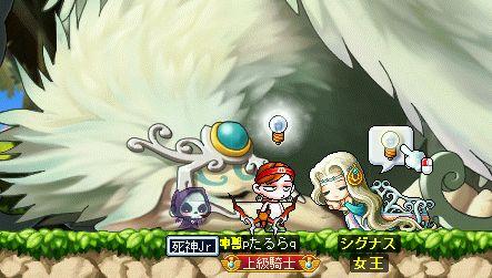 shigunasu02_50.jpg