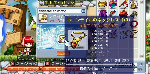 shigunasu02_53.jpg