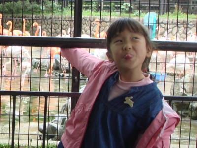 2009.5.6  王子動物園2