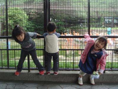 2009.5.6 王子動物園1