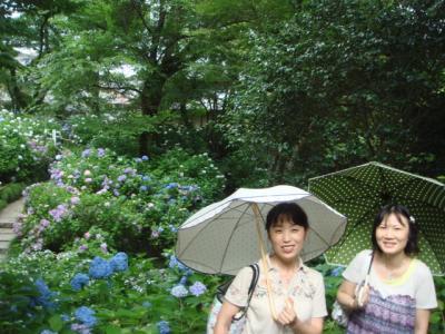 2009.6 矢田寺②