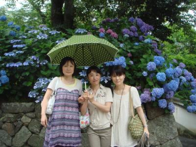 2009.6 矢田寺③