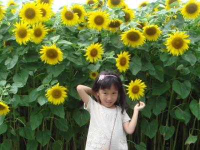 2009.7 淡路島旅行