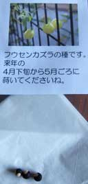 hu_senkadura110508_1.jpg