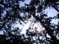 虹の松原3
