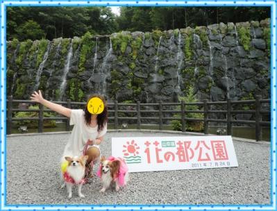 CIMG9494_20110731092947.jpg