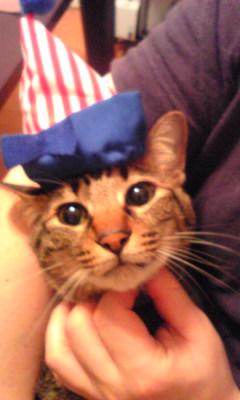 食い倒れ太郎の帽子をかぶるひな