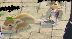mabinogi_2009_07_23_007.jpg