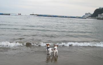 2_27_熱海海辺2