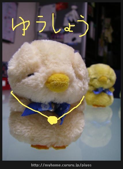 image1993195.jpg