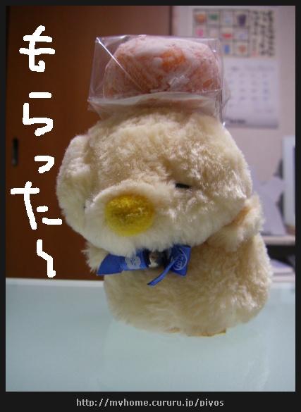 image3065352.jpg