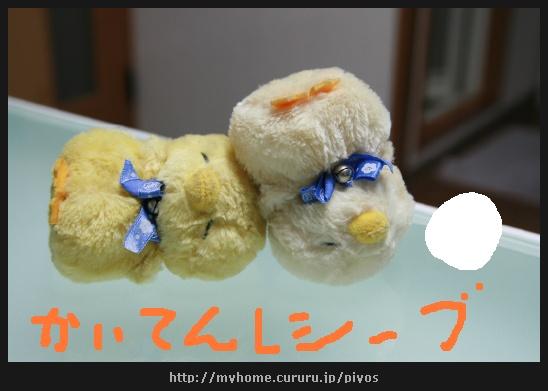 image4646929.jpg