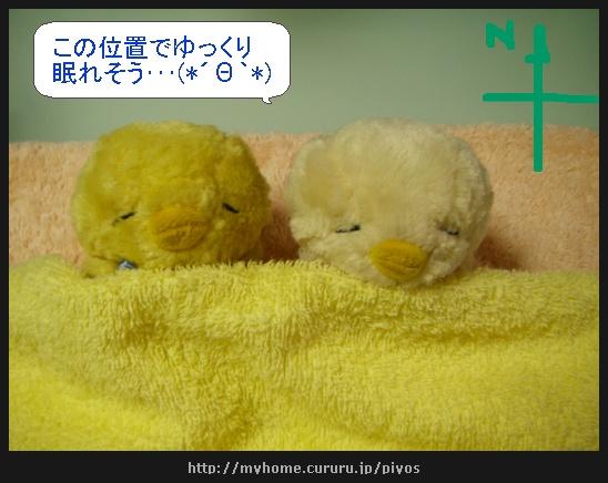 image5880983.jpg