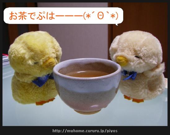 image7436294.jpg
