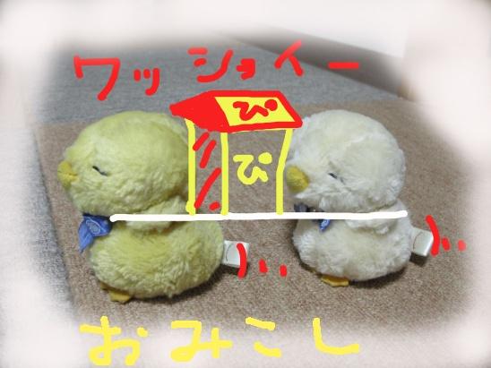 image8177976.jpg