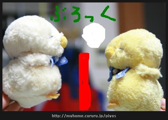image9101827.jpg