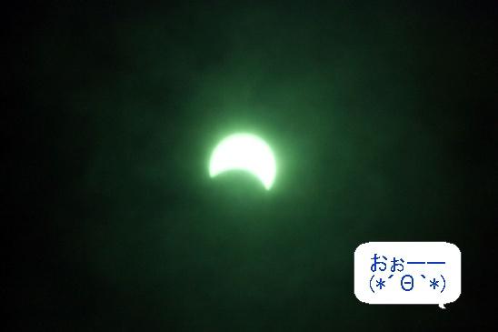 image9491909.jpg
