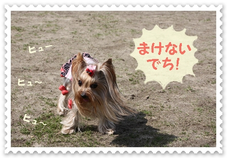 IMG_1055-1.jpg