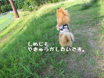 IMG_1300.jpg