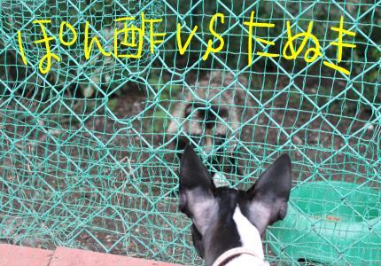 ponzu24+076_edited-2_convert_20090805194736[1]