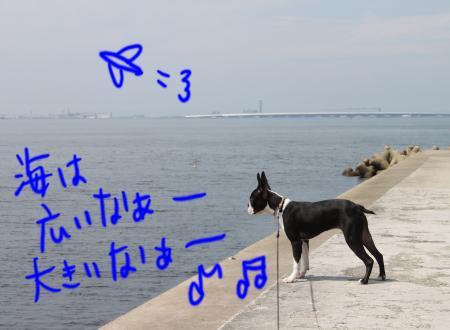 ponzu38+119_edited-1_convert_20090906093124.jpg