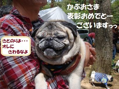 DSC01867_20110806035611.jpg
