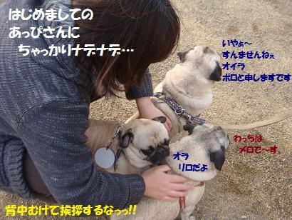DSC03007_20110816114000.jpg