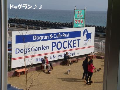 DSC08494.jpg