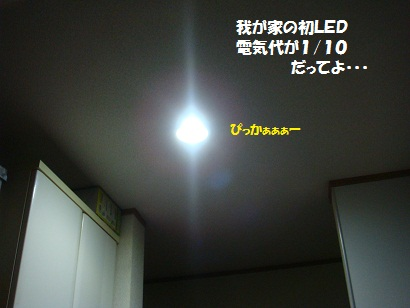 DSC08758_20110723214003.jpg