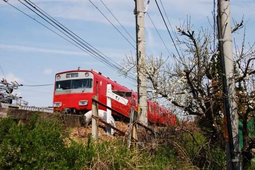 梅と赤い電車