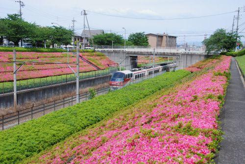 名鉄電車7