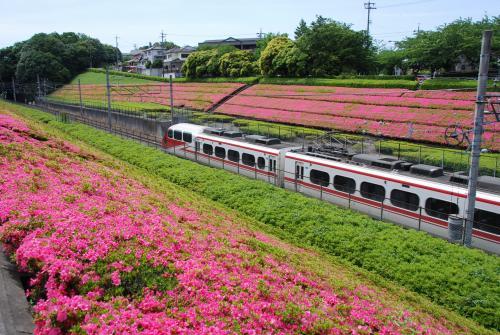 名鉄電車9