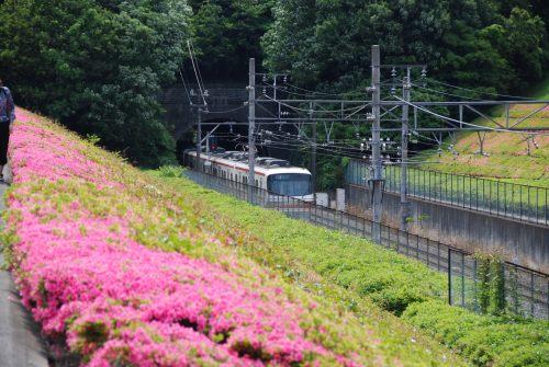 名鉄電車10